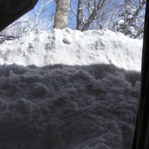 また雪積もっています!