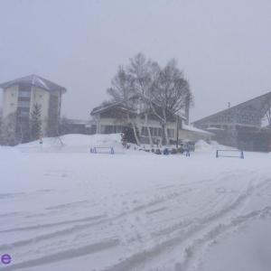 今日の雪は冬並みです!