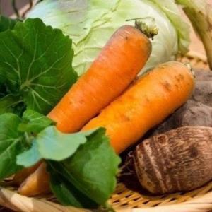 野菜には「太る野菜」と「痩せる野菜」があるそうです