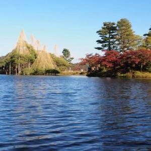 いいお天気でした。兼六園の紅葉も、今週いっぱいですかね。