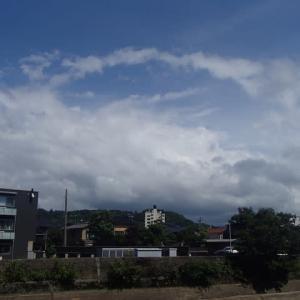 今日は、青空が一時広がりましたが、梅雨明けもう少し先かね。
