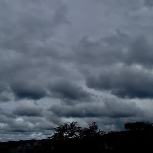 細切れのような黒い雲が去って行き、金沢は午後遅く青空に。でも、飛行機雲がくっきり残っているから、天気は再び下り坂?