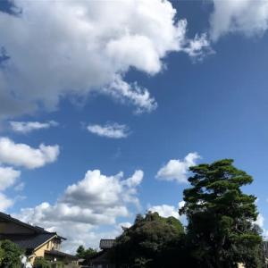 さわやかな秋の空。朝夕、涼しくなってきました。