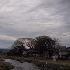 また、雨に戻るんだ。冬の色合いの曇。浅野川。右手の森は。静明寺。