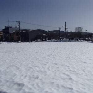 手をつけていない大きなコインパーキングは大雪原。神宮寺。
