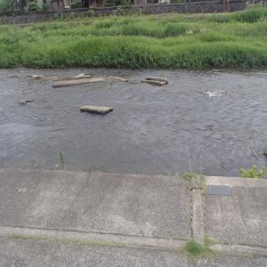 昭和28年、金沢市に大雨、浅野川では、浅野川大橋を除き全橋梁を流失した。もしかしたらその時流失した常盤橋の一部?