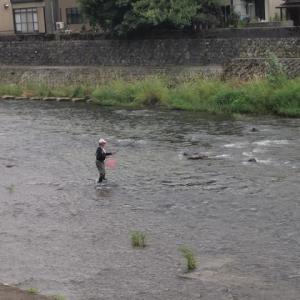 「漁」より「涼」? 浅野川。