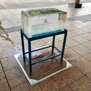 氷がとけていく速度、半端ない。武蔵ヶ辻。近江町市場からの心づくし。