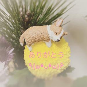 「長岡研究会レポート」(1/19)