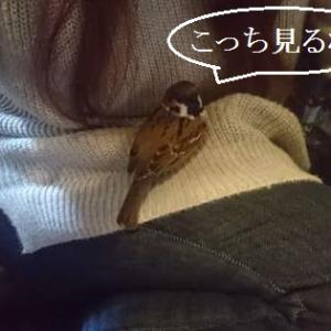 名古屋潮吹き倶楽部