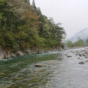 高原川~ ミノーイング