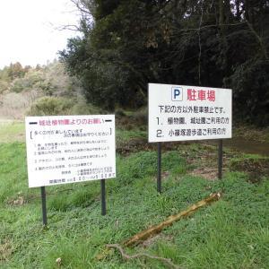 小篠塚城跡_佐倉