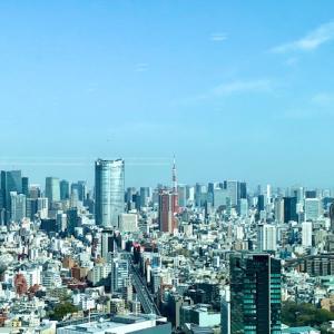 渋谷スクランブルスクエア39階、wework 素敵なスペース♪
