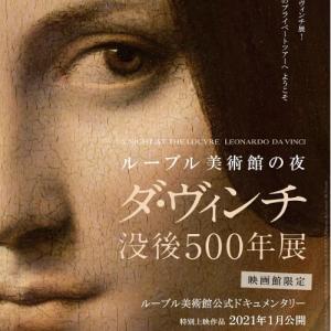 映画「ルーブル美術館の夜ダ・ヴィンチ没後500年展」を鑑賞して