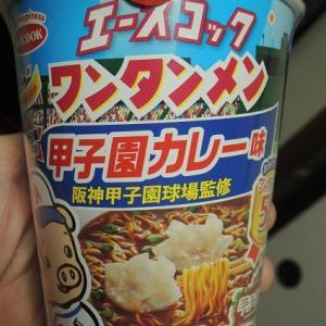 ワンタンメン 甲子園カレー味 どこら辺?
