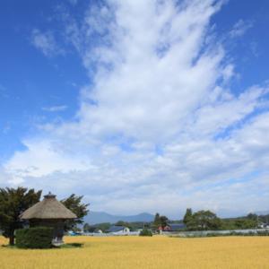 1637 荒神神社