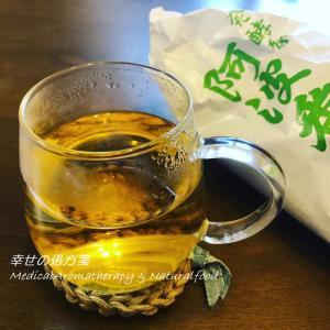 腸活には植物乳酸菌たっぷりのお茶。