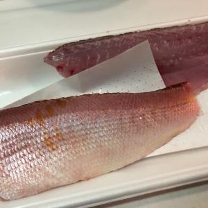 お魚三昧の日