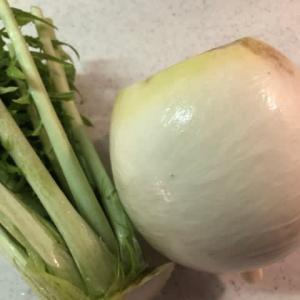 熟成鶏ムネ肉と菊菜の和え物