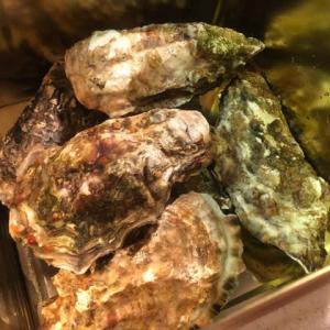 またまた牡蠣のカンカン焼き