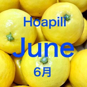 6月のご予約可能日・ハワイアンロミロミサロン・スクール  ホアピリ
