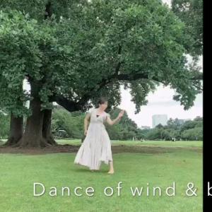 何屋さんかわからないシリーズ〜vol.1 Dancer〜