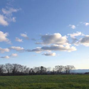 4月の丘陵地