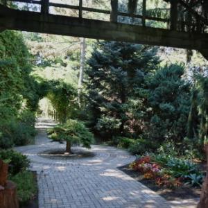 9月上旬 真鍋庭園