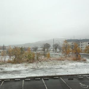 「令和もやっぱり雪」