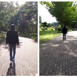 公園散歩♬