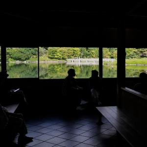 昭和記念公園 日本庭園で
