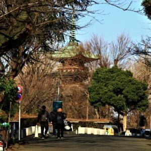 芭蕉と上野恩賜公園