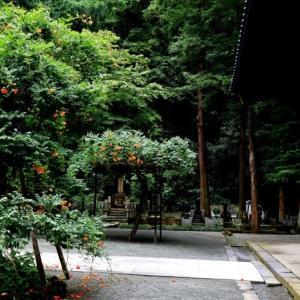 鎌倉 妙本寺