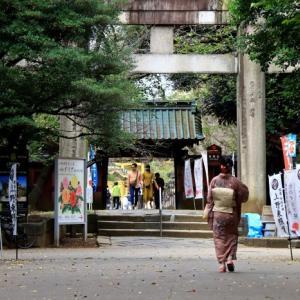 上野東照宮のダリア展