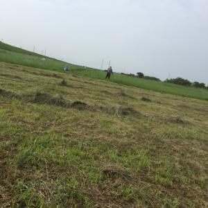 今日は木曽川キャスティングコートの草刈りイベント^_^