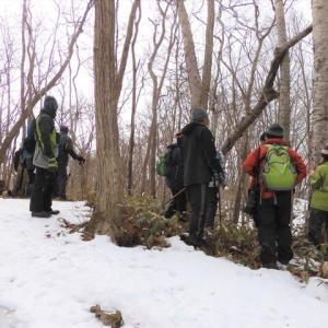 萩の里自然公園の「冬の里山ウォッチング」