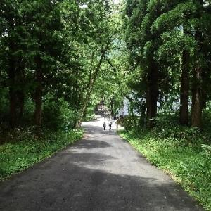 信越五岳2018(100マイル)への準備 その2~戸隠神社奥社へ参拝and試走