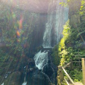 桜松神社と不動の滝と龍