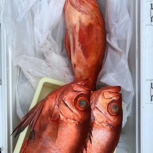 根魚とサワラじゃ