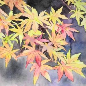 寺を彩る紅葉を描く
