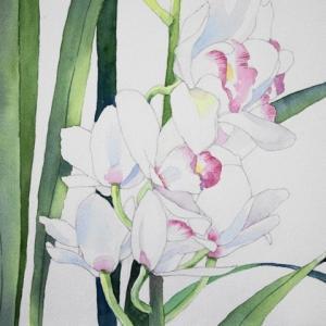 ランの花を描く^^