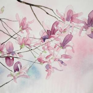 紫木蓮を描く^^