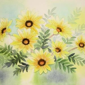 ガザニアの花を描く^^