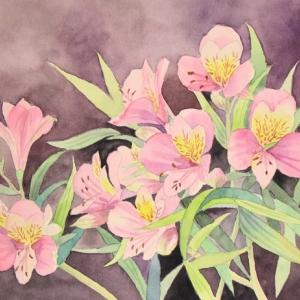 アルストロメリアの花が咲く^^