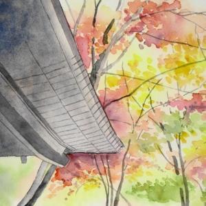 深まりゆく秋の寺の紅葉^^