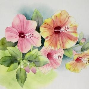 11月なのに咲くハイビスカスの花を描く^^