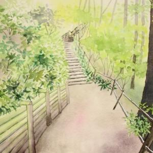 新緑の春の山道^^