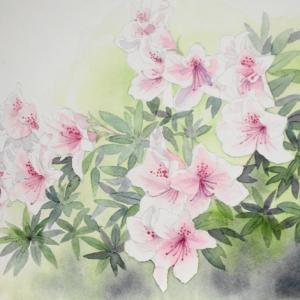 ツツジの花咲く庭^^