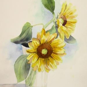 夏の花、ひまわりを描く^^
