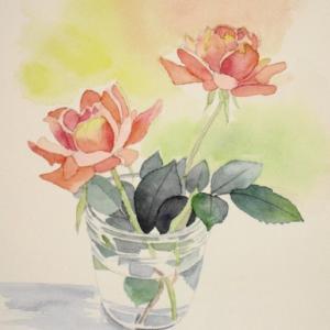 オレンジ色の秋バラを描く^^